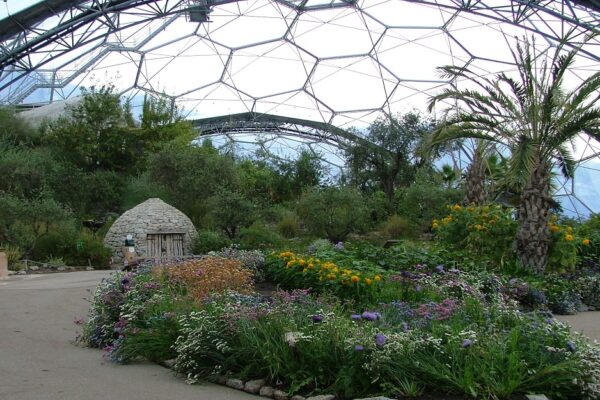 Teaching at the Eden Project