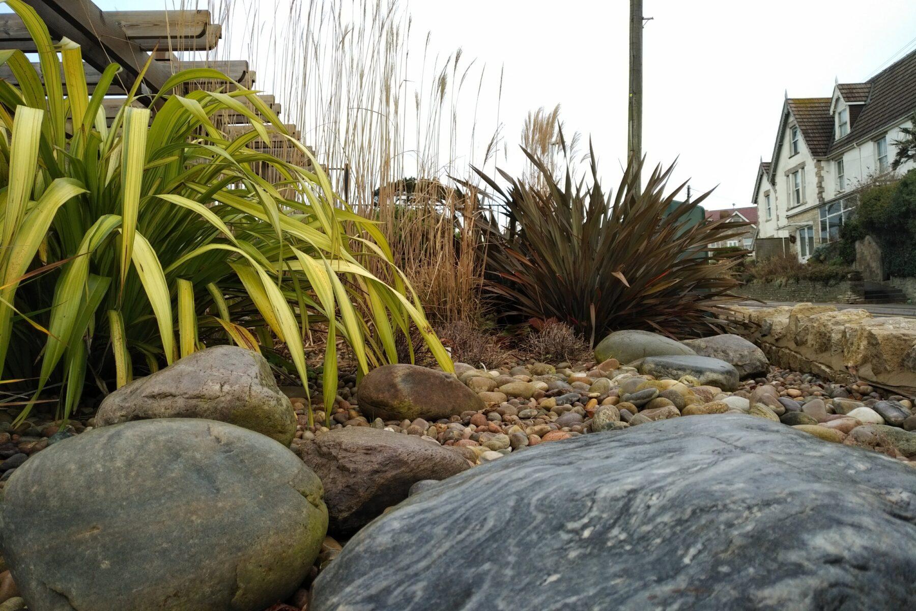 Coastal planting